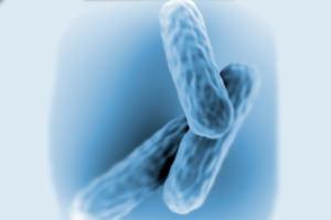 ízületi fájdalmak elvonási szindróma vitaminok a térdízületek fájdalmához