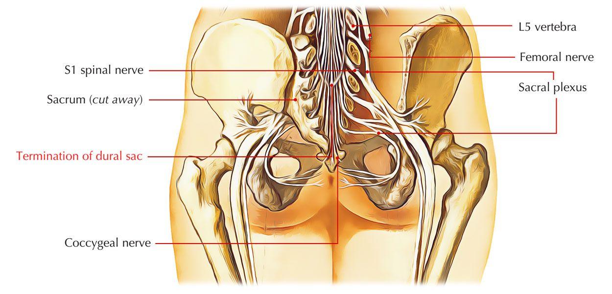 premenopauzális ízületi fájdalom hogyan lehet kezelni a rheumatoid arthritis és az arthrosis