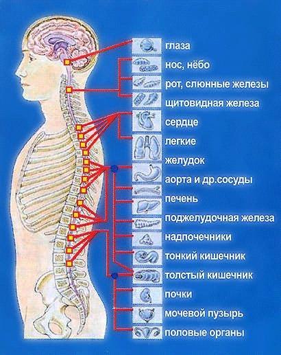 a parti keresztirányú ízületek deformáló artrózisa