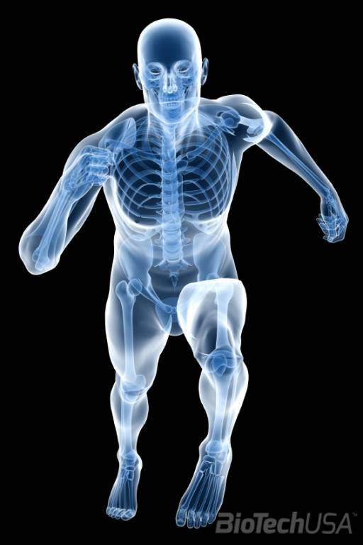 ha a lábak ízületei fájnak, akkor mi a kenőcs fájdalom a lábakban és a csípőben