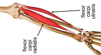 fájó csont a bokaízületben lábízület gyógyszerei