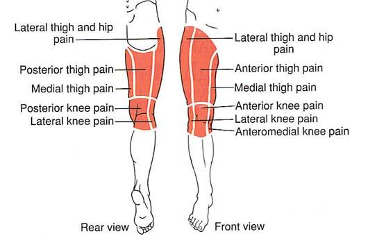 Otthoni rehabilitáció csípő artroplasztika után: helyreállítási időszakok - Fej July