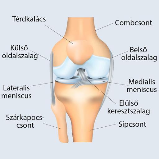térdfájdalom komplex kezelése