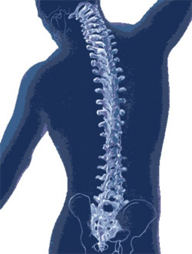 guggol a csípőízület fájdalmához