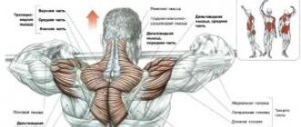boris tsatsulin az ízületek kezelése)