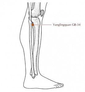 ha a láb fáj a csípőízületben