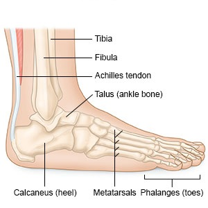 laza bokaszalag tünetei