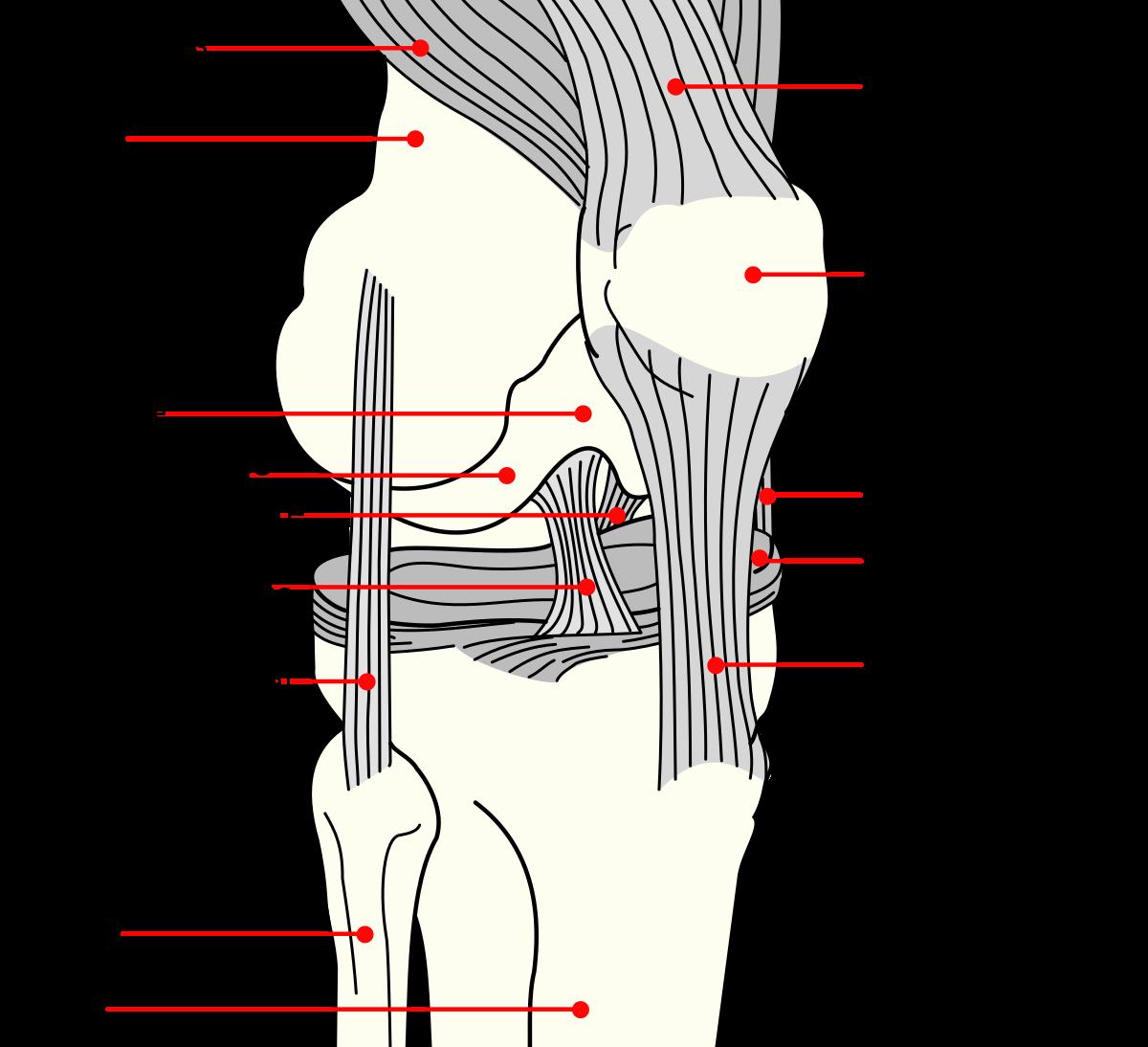 bursitis fájdalom a könyökízületben