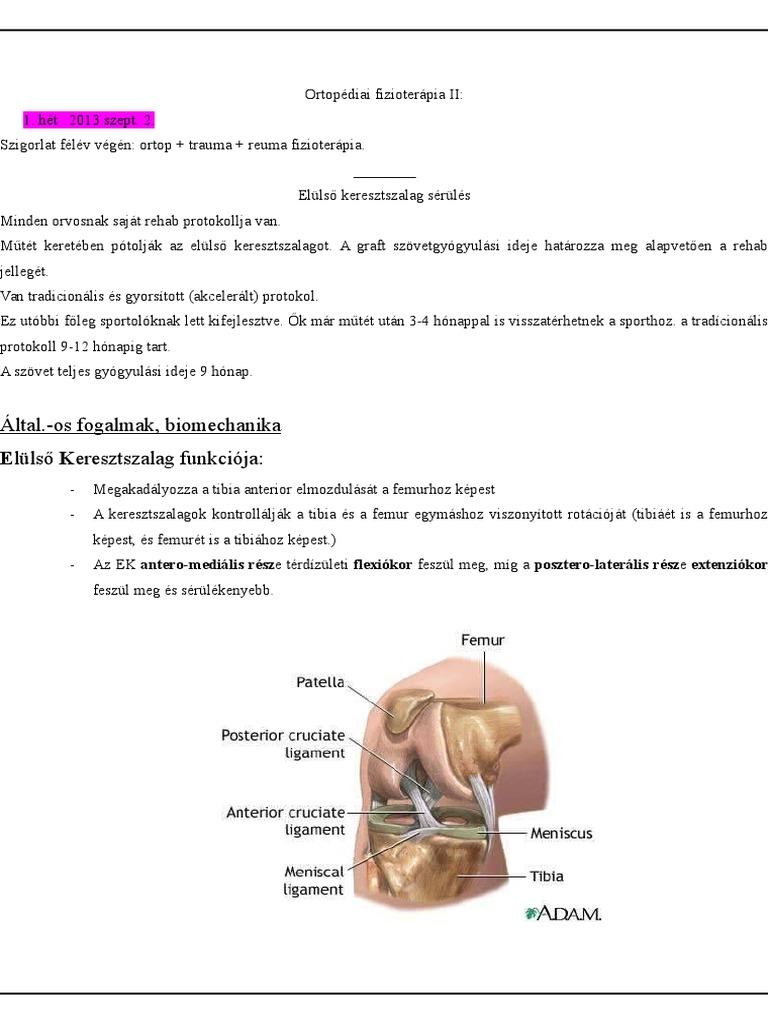 ízületi mozgékonyság sérülés után)