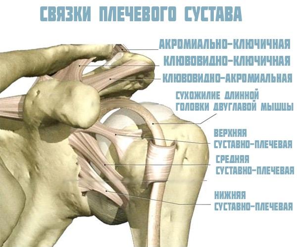 a vállízület kezelésének rotációs mandzsettájának károsodása)