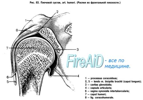átfogó artróziskezelés