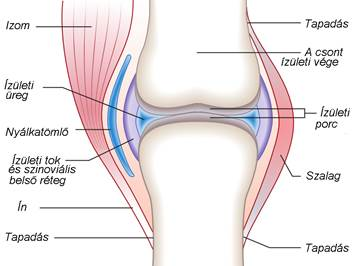 a térd kenőcsének artrózisa kezelési áttekintés