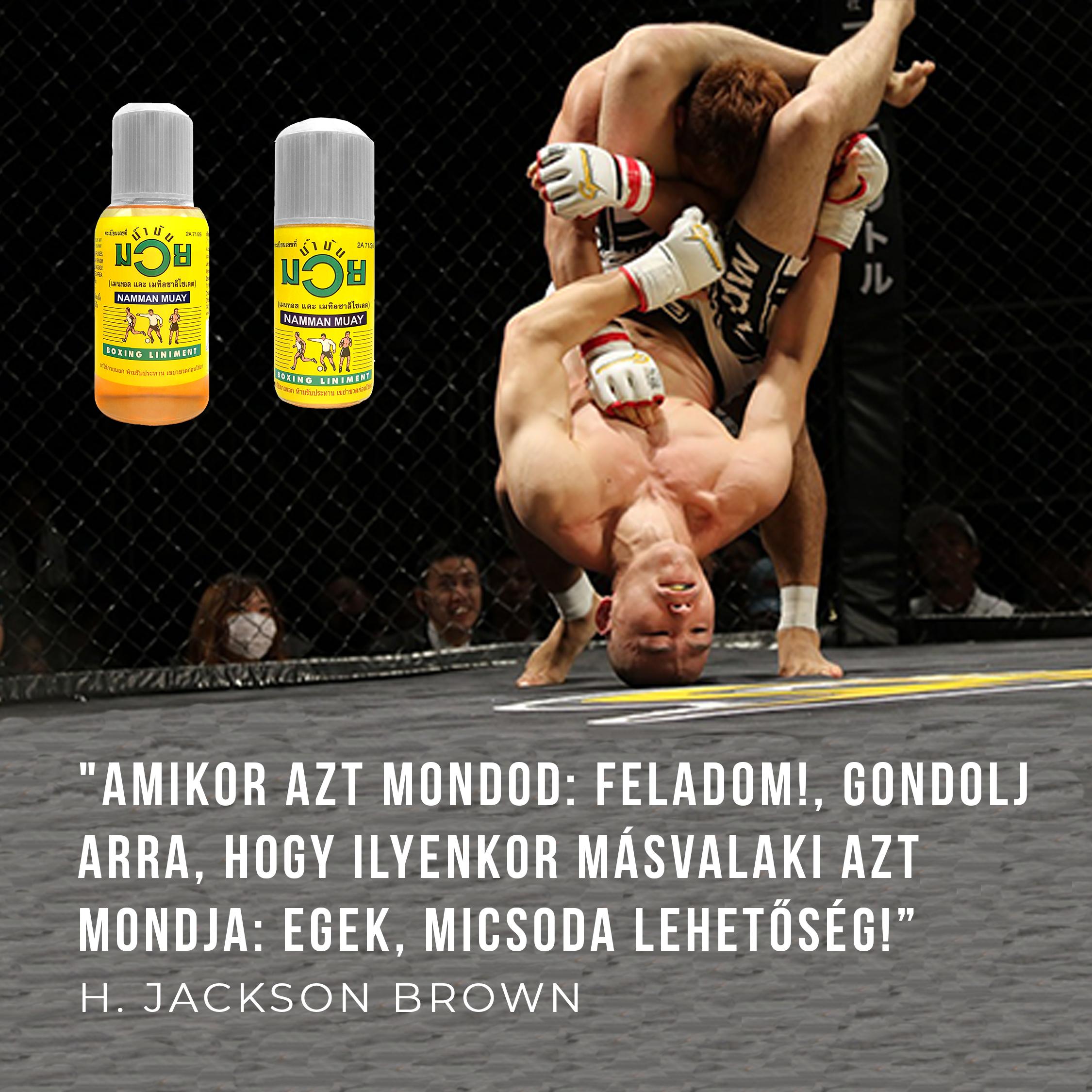boxer ízületi sérülések