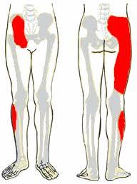 sacroiliac ízületek ízületi gyulladása)