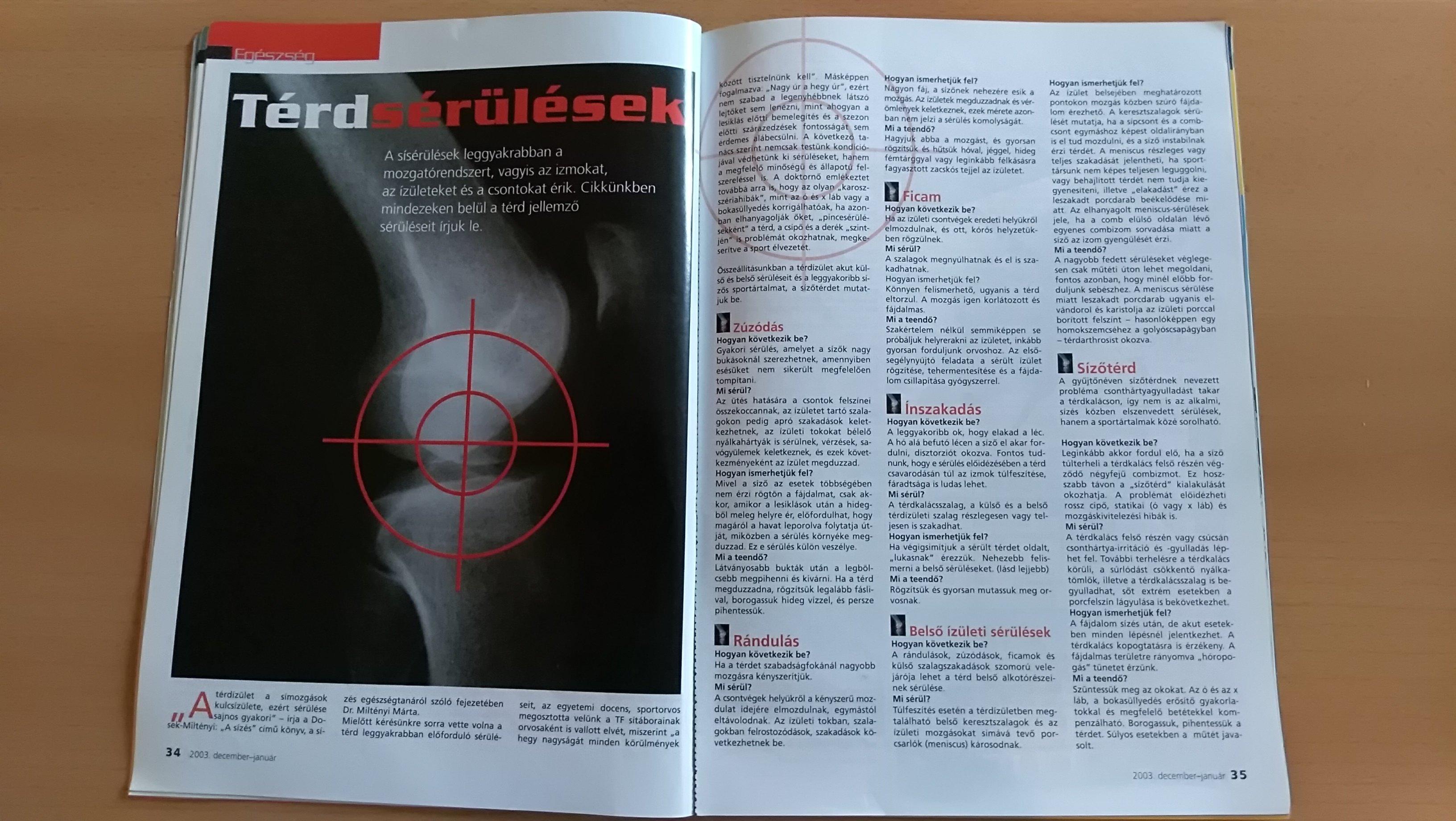 térd sérüléssel kapcsolatos cikkek
