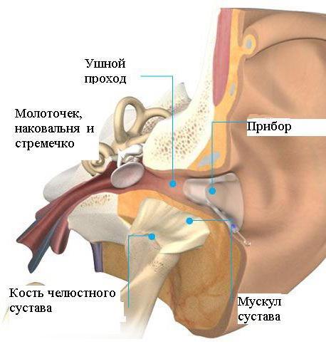 💊 Mi a spondylosis? okok, tünetek, kezelés és műtét -