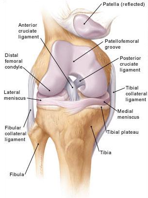 ülő helyzetben a térdízület fájdalma a hát és az ízületek nagyon fájnak
