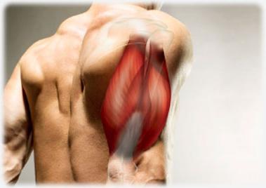 a hát és az ízületek nagyon fájnak ízületi tisztítás és kezelés