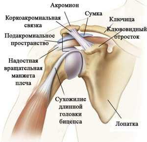sós nátrium-ízületi kezelés ízületek fájnak a túró után
