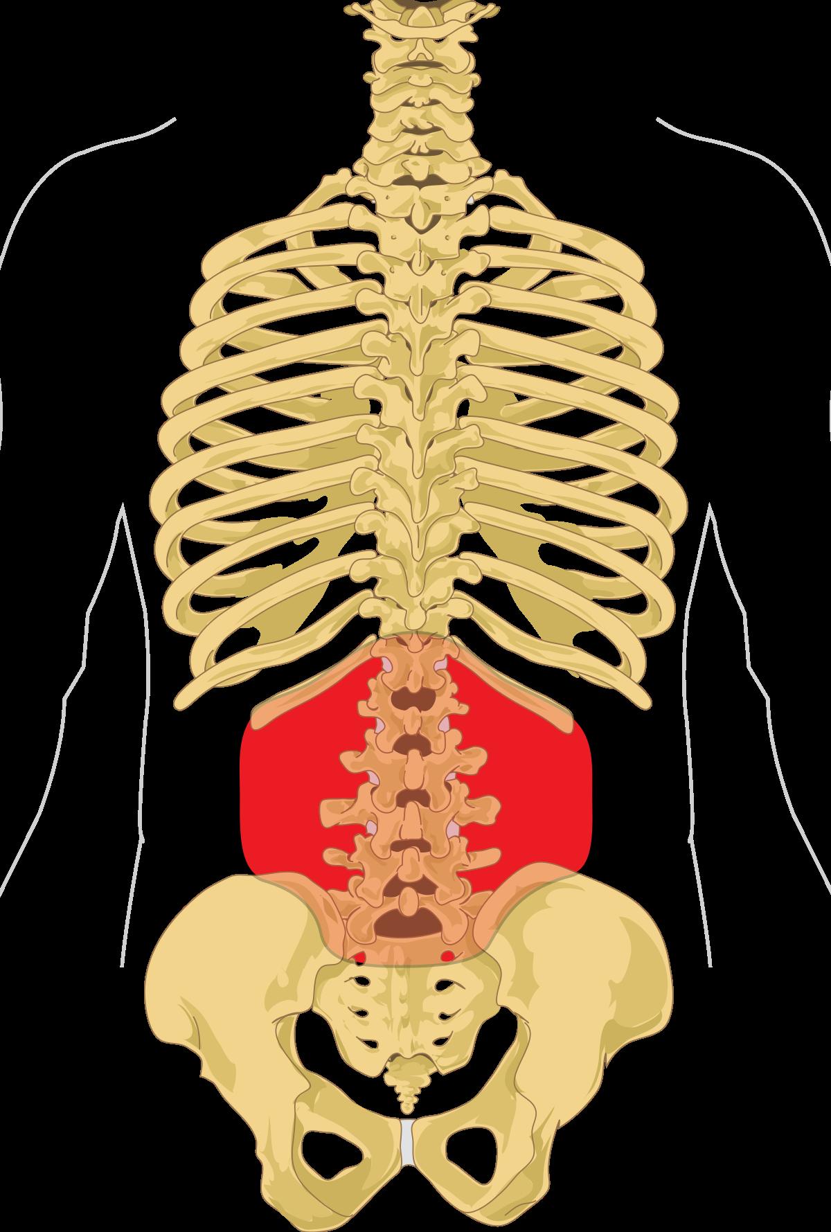 hol kell kezelni a gerinc ízületeit