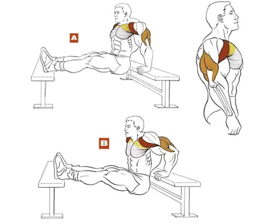 váll fájdalom push-up után)